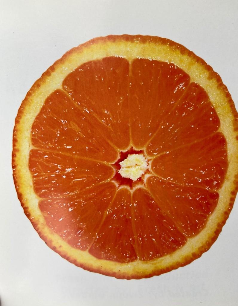 The Fruit pomorandža